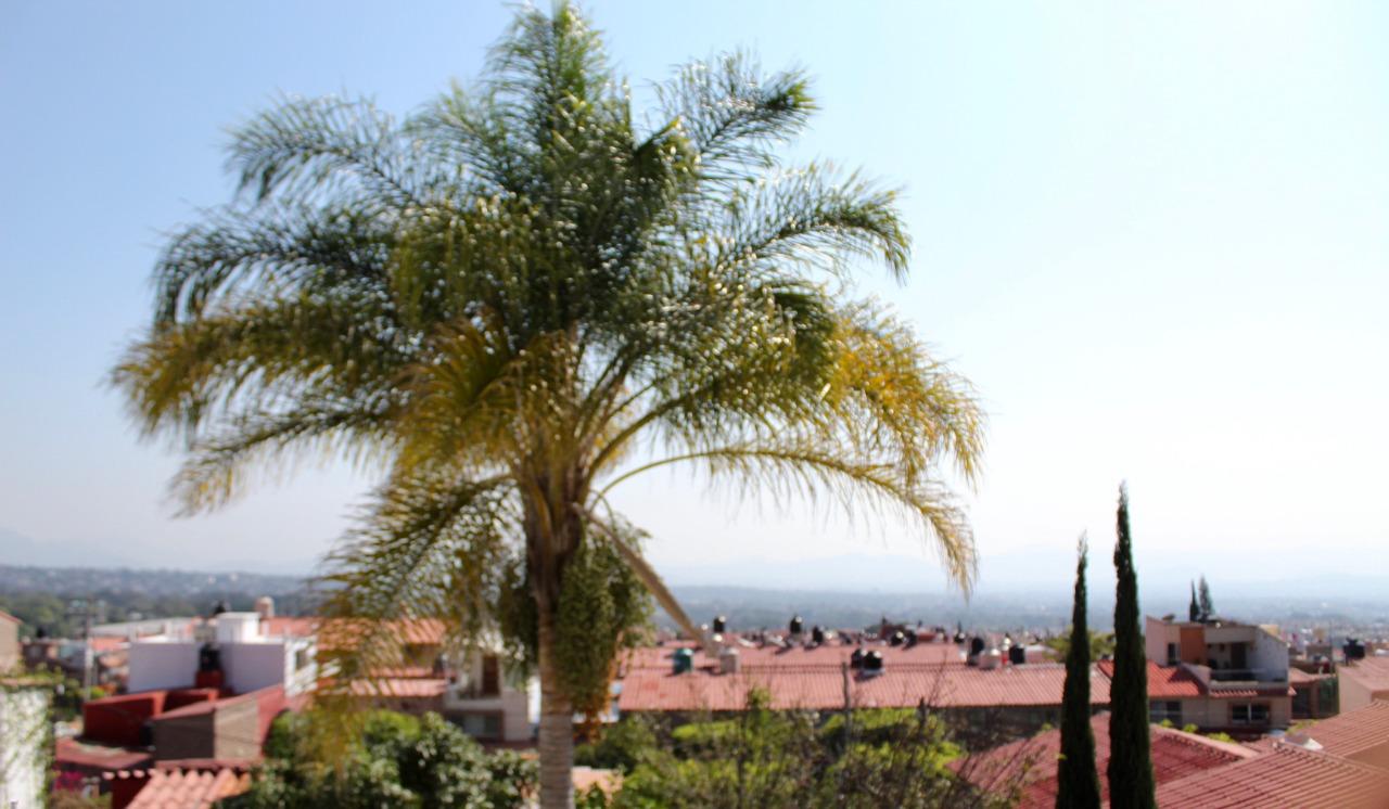 Jardines de Ahuatlan